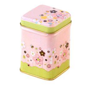 Petite boîte à thé (vide)